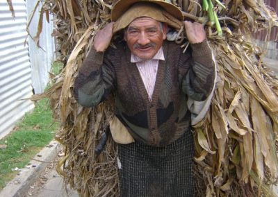 Although Bernardino Teleguario, carrying corn stalks doesn´t wear a shirt of Patzún, Chimaltenango, he does have on the white pants and rodillera typical of many towns of the highlands.Patzún, Chimaltenango
