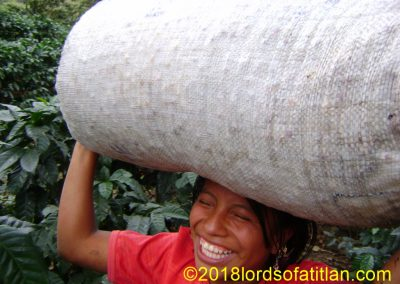 She has 140 pounds on her head but smiles in the coffee harvest of Pampojilá.
