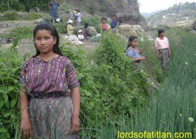 Family from Tierra Linda in onion harvest, Panajachel