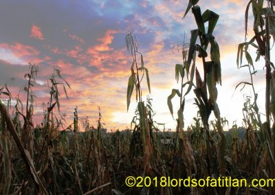 This cornfield and sunset are in Patzun but remind me of Illinois.