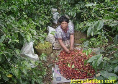 Juana´s daughter Mari Luz carries on with the work in the Finca Pampojilá.
