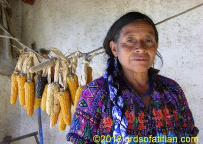 Woman from Chui Solís with drying corn. Although the corn harveat is meager, the quality and variety of highland Guatemalan corn is superior to my Illinois variety. However, by the Coast my inferior Dekalb seeds dominate.